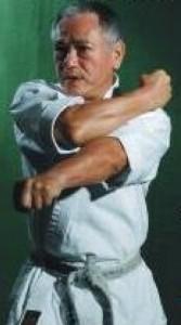 Hiroyasu Inoki